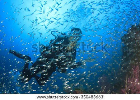 Young woman scuba diving in fish over coral reef - stock photo