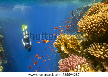 Young woman snorkeling close to reef in Blue Hole near Dahab, Egypt.  Blue Hole is well with depth of 100 m, a place often visited by divers.                              - stock photo