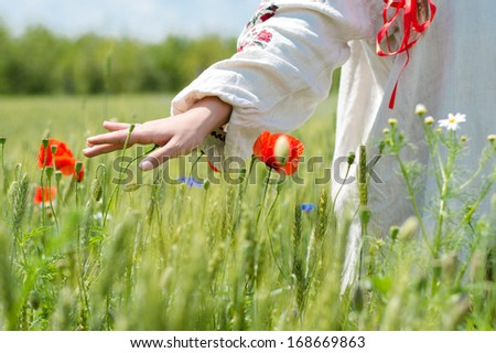 Young woman walking in green wheat field on summer day hand closeup - stock photo