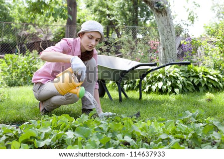 Young woman watering the garden bed - stock photo