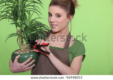 Young woman with a houseplant - stock photo