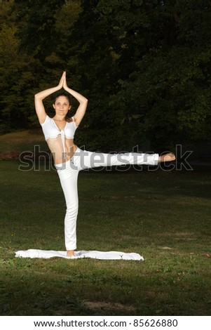 Young woman working out in park - stock photo