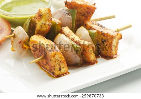 Yummy Paneer Tikka - stock photo