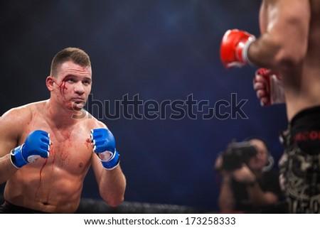 ZAGREB, CROATIA - NOVEMBER 2, 2013: Final fights at Croatian MMA legaue. Matej JURIN (blue gloves) VS Hrvoje MARTIC (red gloves). - stock photo