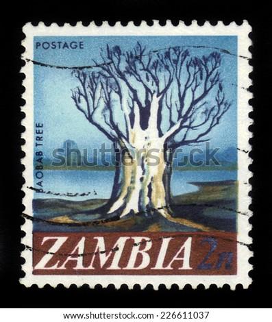 Zambia - CIRCA 1968: A stamp printed in Zambia shows Baobab tree, circa 1968 - stock photo