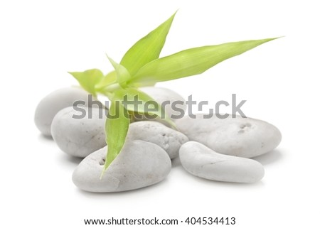 zen basalt stones and bamboo on the white background - stock photo