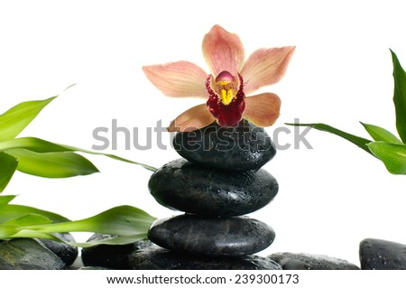 zen basalt stones and orchid with bamboo  - stock photo