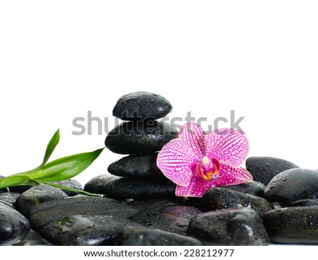 zen basalt stones and orchid with bamboo on dew - stock photo