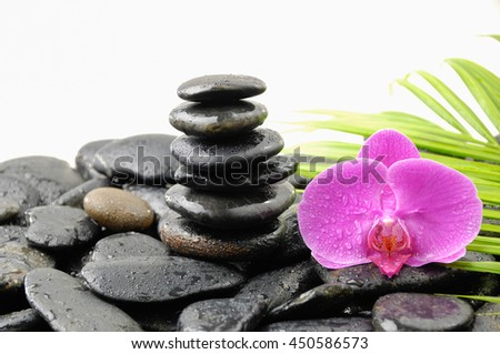 zen basalt stones and pink orchid with leaf on dew  - stock photo