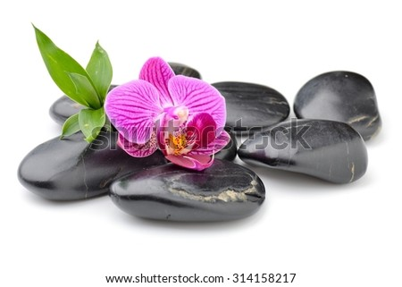 zen basalt stones ,orchid and bamboo isolated on white - stock photo