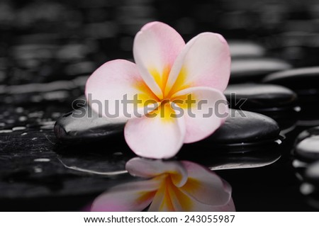 Zen pebbles. Stone spa and spa concept. - stock photo