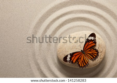 Zen rock with butterfly - stock photo