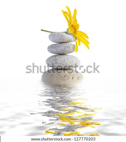 zen spa stones with flower - stock photo