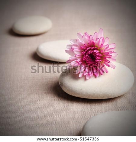 Zen stone and flower - stock photo