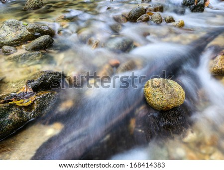 Zen stone over a running stream in Malaysian jungle - stock photo