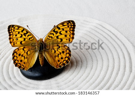 Zen stone with butterfly - stock photo