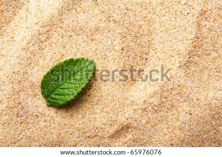 zen stone with leaf on sand showing spa concept - stock photo