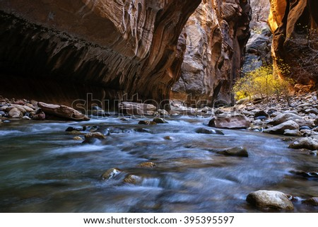 Zion Narrows - Virgin River in Utah's Zion National Park - stock photo