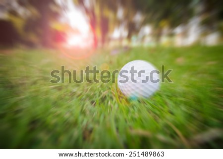Zoom golf-ball on course - stock photo