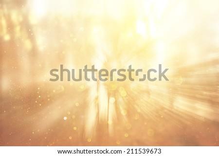 zoom lens and golden light burst among trees - stock photo