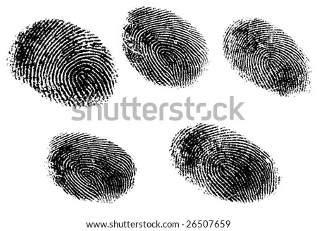 5 Black and White Vector Fingerprints - Very accurately scanned and traced ( Vector is transparent so it can be overlaid on other images, vectors etc.) - stock vector