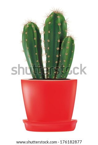 Cactus in a red flowerpot - stock vector