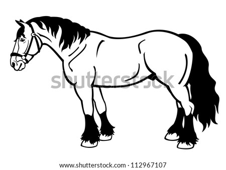 Horse Pictures Black And White Drawing Draft Horse Black And White