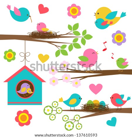 Family of birds. Vector set - stock vector