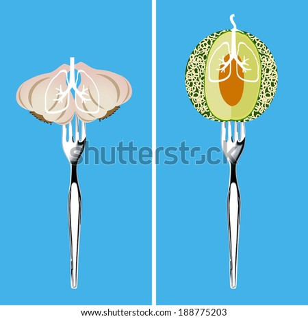 Foods for Healthy Lungs, Illustrator, vector - stock vector