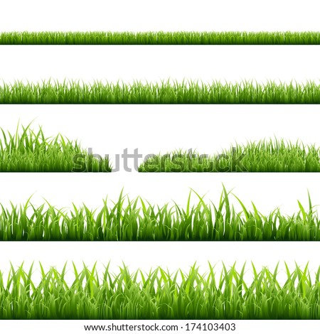 6 Grass Borders, Vector Illustration - stock vector