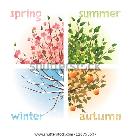 4 seasons in 1 tree - stock vector
