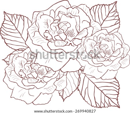 silhouette of rose with leaves. Vector illustration. - stock vector