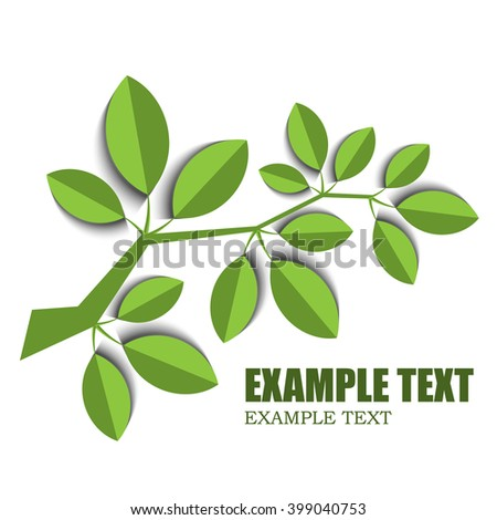tree branch with green leaves on white - stock vector