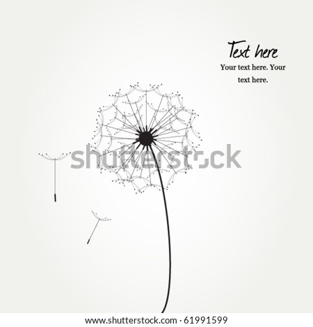 Vector card with flower, dandelion on grey - stock vector