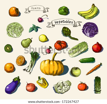 Vector illustration of a set of hand-painted vegetables, fruits - stock vector