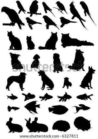 36 Vector silhouettes of household pets - stock vector