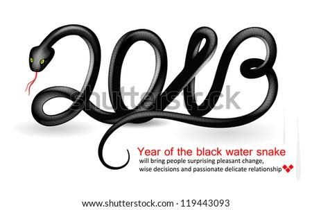 2013 - Year of the snake design. Vector illustration. - stock vector