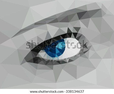 A beautiful blue eye, low poly vector illustration.   - stock vector