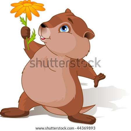 A cartoon groundhog holding a first spring flower. - stock vector