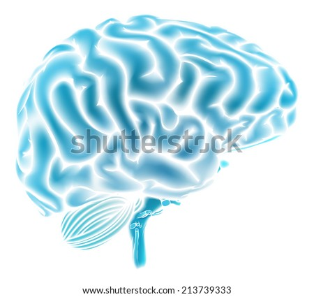 A conceptual illustration of a glowing blue human brain. Could be a concept for a brainstorm or intelligence - stock vector