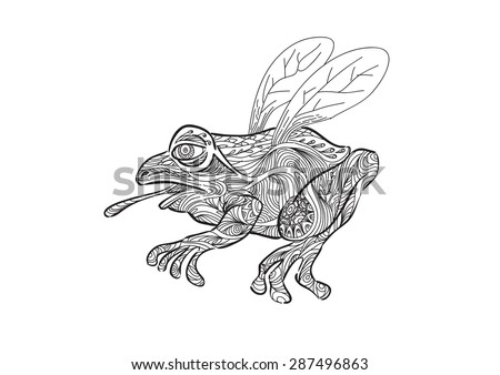 Flying Frog Drawing a Hand Draw of Flying Frog