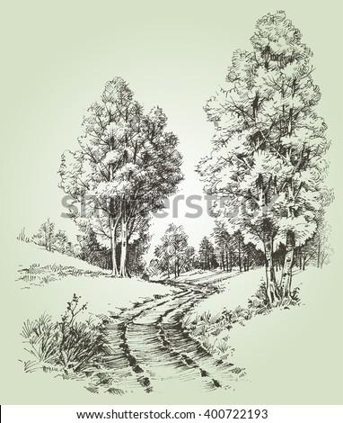A path in the forest - stock vector
