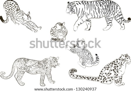 A set of  large predatory cat. Vector illustration. - stock vector