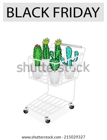 A Shopping Cart Full with Various Type of Cactus for Black Friday Shopping Season and Biggest Discount Promotion in A Year.  - stock vector