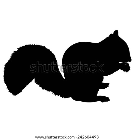 A silhouette of a squirrel eating a nut - stock vector