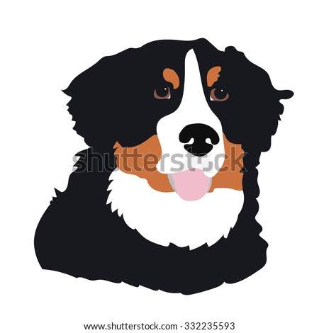 A stylized portrait of a Bernese Mountain Dog - stock vector