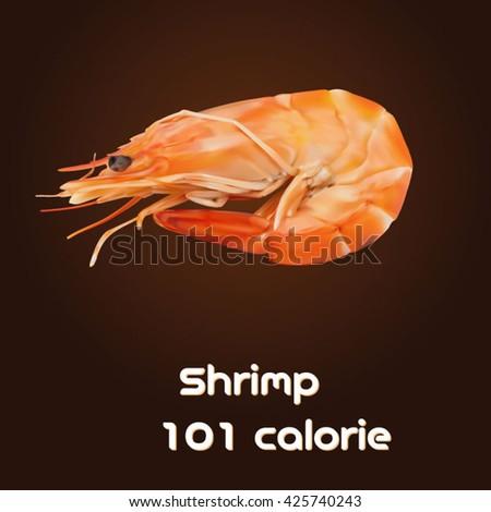 A vector illustration for shrimp - stock vector