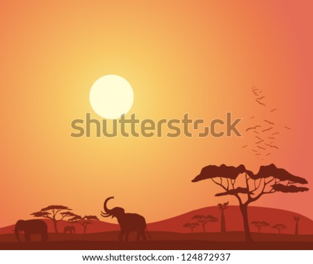 a vector illustration in eps 10 format of a colorful african landscape with acacia trees hills elephants and roosting birds under a bright sunset sky - stock vector