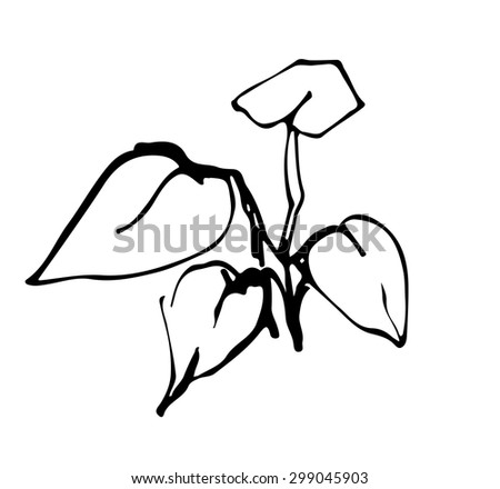 a vector illustration sprout plant ink graphics - stock vector