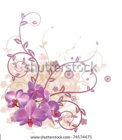 A very stylish vector floral background illustration with pink orchid flowers. - stock vector